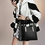 Hynbse Set of 2 Women Fashion Casual Leather Cross Body Handbag Shoulder Bag