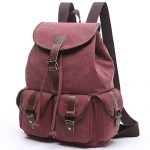 BAOSHA LP-13 Vintage Canvas Casual Daypack Laptop Backpack College Campus School Bags for Women Ladies Girls (Red)